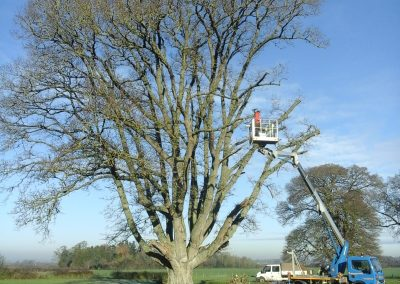 Cherry picker at Dillington